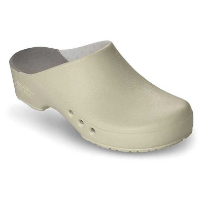 Blue Chiro Clogs With Inner Lining Without Heel Strap